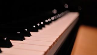 1回のピアノレッスン料12000円かかるとこに行ってるけど質問ある?