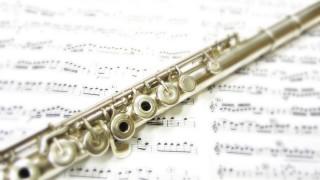 吹奏楽強豪校にいたけど質問ある?