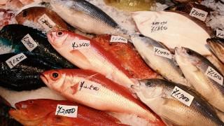 スーパーの鮮魚で働いてるけど質問ある?