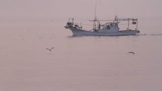 漁師してるけど質問ある?