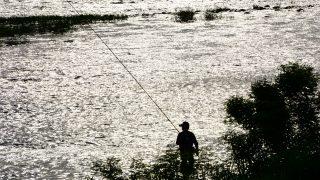 職業釣り師だけど何か質問ある?