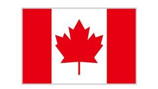 カナダ人の彼女いるけど質問ある?