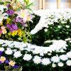 元葬儀屋のワイに質問ある?