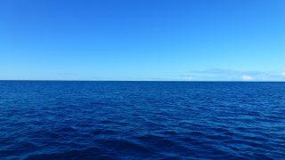 船酔いする海洋研究者だったけど何か質問ある?